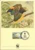 WWF - AÑO 1989 - TARJETA OFICIAL ILUSTRADA DE SAN VICENTE, TEMA FAUNA , LORO DE SAN VICENTE, MATASELLOS DE PRIMER DIA. - Pájaros