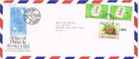 12917. Carta Aerea KINGSTON (St, Vincent Y Grenadines) 1982 - St.Vincent (1979-...)