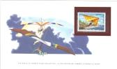 World Of Sports Display Card  -  Mint Romania Stamp  -   HANG-GLIDING - Fallschirmspringen