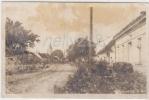 Witzelsdorf (24a318) - Autriche