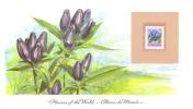 World Of Flowers Display Card  -  Fleurs Du Monde  -  Mint Canada Stamp  -  BOTTLE GENTIAN - Flora