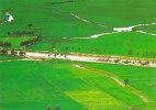 VIETNAM - AK 107952 Mekong Delta - Green Field - An Giang - Viêt-Nam