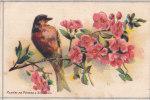 Fleurs De Pêcher - Un Oiseau - Carte 8 X 13 Cms. - B. Flower Plants & Flowers