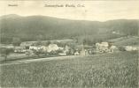 Bieleboh, Sommerfrische Wurbis, Gesamtansicht, 1924 - Deutschland