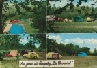 St. Geertruid(Z.L.) - Camping De Bosrand (MirP899 - Pays-Bas