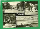 PALANGA - GINTARO MUZIEJUS.J. BASANAVICLAUS GATVE , EGLE ZALCLY KARALIENE (SKULPT R. ANTINIS) BALTIJOS JURA - Lituanie