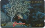T&C- 1C . Redband Parrotfish And Coral  - MINT -. - Turks & Caicos (I. Turques Et Caïques)