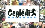BASKETBALL GOLF FOOTBALL SOCCER SPORT BUS CEGLED PETOFI SANDOR KOSSUTH LAJOS * CALENDAR * Panorama Media 2010 * Hungary - Small : 2001-...
