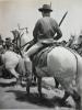 Provence , Camargue , Gardian A Cheval , Héliogravure 1954 - Historische Dokumente