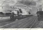 FERROVIAIRE / TRAIN / SNCF / Image : Locomotive à Vapeur Derniers Panache Des 231 E Chapelon Vers Valenciennes 1955 - Transporto