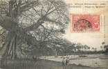 GUINEE KONAKRY PLAGE DE BOULBINE COLLECTION FORTIER N°173 - Guinée Française