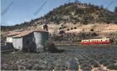 Train Ferroviaire Chemin De Fer : Près De MALLEMOISON Hautes Alpes 05 Autorail 300ch Dans Champ De Lavande ( Grande CP ) - Treinen