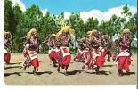 Watusi Dancers  -  Uganda   Kenya - Uganda