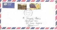 Lettre     Afrique Du Sud 1995 (369)  Grappe Raisin - Afrique Du Sud (1961-...)
