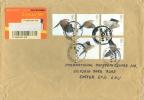 GB Set On Cover - Eagles & Birds Of Prey