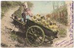 08528g CHARRETTE à CHIEN - Laitière Flamande - 1904 - Carte Colorisée - Landen