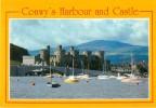 CPSM Harbour And Castle-Conwy   L1040 - Pays De Galles