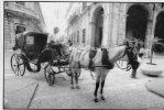 Cp ,CUBA , La HABANA , Coche En La Habana Vieja , Attelage , Cheval , Voyagée , Photo : JMC , Métier - Postcards