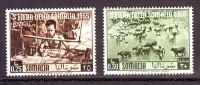 SOMALIA  ITALIANA 1955   NUOVO* 2 VALORI - Somalie