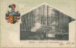 ALLEMAGNE - HANAU - Blick In Den  Schlossgarten (embossed Postcard) - Hanau