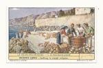 Chromos, Produit Liebig - La Pêche Des éponges - 4 - Le Blanchiment Primitif - Liebig