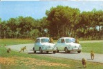 AUTO FIAT,SAFARI,ET LES SINGES  RUHE MALLORCA ESPAGNE  ,COLORISEE  REF 26735 - Scimmie