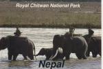 NEPAL - ROYAL CHITWAN NATIONAL PARK - ELEPHANTS - Nepal