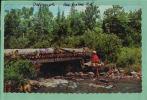 CPA -CANADA -Souvenir - SHERBROOK, Qué.- Scènes & Types .-- AVRIL 2 SAL-2012 -0441 - Sherbrooke