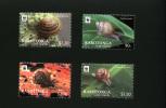 Rarotonga (Cook) // 2012 - Faune En Danger, Escargots Wwf - 4v Neufs // Mnh - W.W.F.