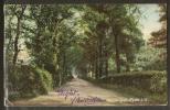 - CPA ANGLETERRE - Rye, Spencer Road - Rye