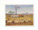 Schafherde  /  Troupeau De Moutons / Sheep Mouton Animaux Animal / Eolienne En Arrière-plan  //  IM 64/1 - Cigarettes