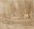 Photo AILLY-SUR-NOYE (anciennement Berny Sur Noye) - Parc à Chevaux (A1, Ww1, Wk1) - Ailly Sur Noye