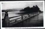 Japan  Wooden Bridge Unused - Japan