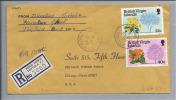 BRITISH VIRGIN ISLANDS R-Brief 1978-10-10 Nach Chicago Illinois USA - Iles Vièrges Britanniques