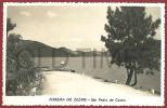 PORTUGAL - FERREIRA DO ZEZERE -  SÃO PEDRO DE CASTRO - 1950 REAL PHOTO PC - Santarem