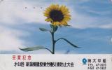 Télécarte Japon - Fleur TOURNESOL - SUNFLOWER Japan Phonecard - Sonnenblume Blume Telefonkarte - 1551 - Fleurs