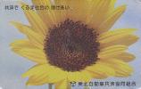 Télécarte Japon - Fleur TOURNESOL  - SUNFLOWER Japan Phonecard - Sonnenblume Telefonkarte - 1558 - Fleurs