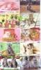 LOT 50 Telecartes + Prepayees Differentes Japon * CHATS * CATS  * KATZE * KATTEN (LOT 228) Prepaid Cards Japan - Telefonkarten