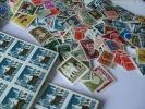 Partijtje Nederland Uitzoekwerk Ongebruikt En Postfris - Collections