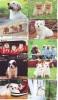 LOT 50 Telecartes + Prepayees Differentes Japon * CHIENS  * DOGS * HUNDE * HONDEN (LOT 253) Prepaid Cards Japan - Verzamelingen