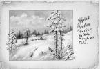 CPA 470 CPM Carte De Voeux De Finlande . Oblitérationn Vuoksen.. 1958 Rouge Gorge Neige Sapin Noel Colorisé - Finlande