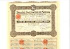 Société Cotonnière De Saïgon Année 1924 - Shareholdings