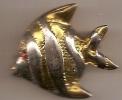 Broche (poisson) - Brochen
