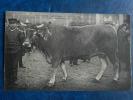 79  Parthenais ( Autre Version Avec Parthenay ) - Concours General - Paris 1911 - 1er Prix - Distillerie De Melle - Parthenay
