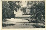 """Vught - """" Brabants Lustoord """" - Baden, Zwemmen, ... -1950 ( Verso Zien ) - Vught"""