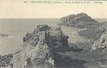 BRETAGNE - 29 - FINISTERE - TREGASTEL-PRIMEL - Vue De La Pointe De Primel - Primel