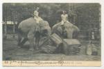 CPA - Animaux Eléphants De L´ Inde - Exposition Coloniale - 20324* - Elephants