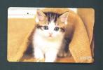 JAPAN  -  Magnetic Phonecard As Scan (251-065) - Japan