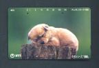 JAPAN  -  Magnetic Phonecard As Scan (111-016) - Japan