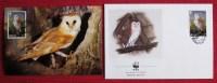 WWF Ansichtskarte Tiere Vogel Die Schleiereule Mit Briefumschlag 1989 - Oiseaux